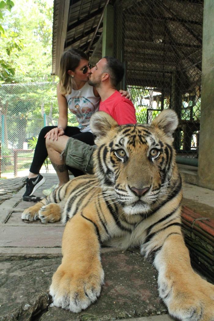 themagicbox-thailand-honeymoon-bangkok-chiangmai-chiangrai-kohsamui-kohpangan
